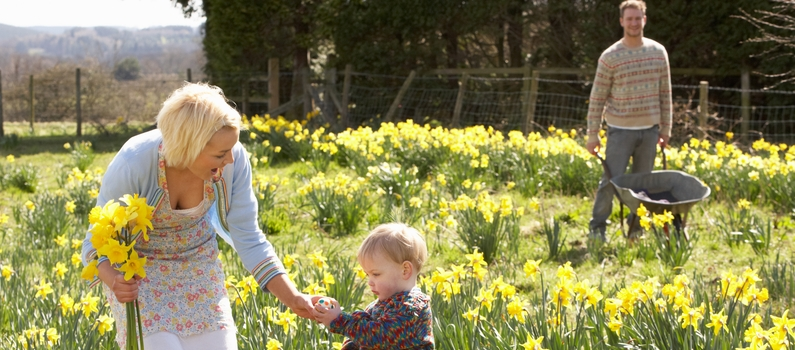 Family with daffodils